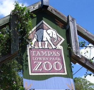 blog_zoo1
